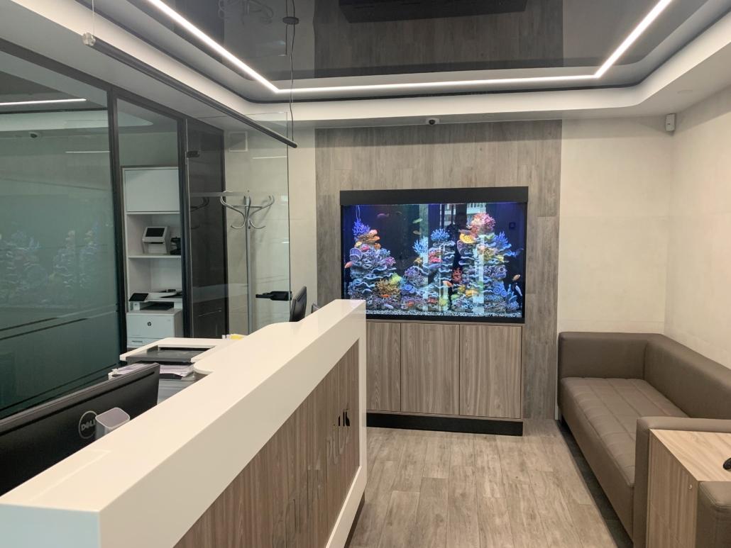 Офіс Агентства нерухомості SOFIA PLUS, Київ, Оболонь, пр. Оболонський, 10, 0679323939